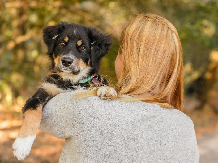 sir-click-a-lot-hundefotografie-Fee-9-705x529 Hundefoto