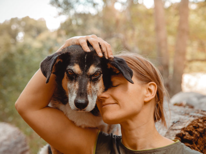 hundefotografie-koeln-1440-1-705x529 Hundefoto